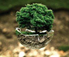 Grønne ændringer du kan lave i dag